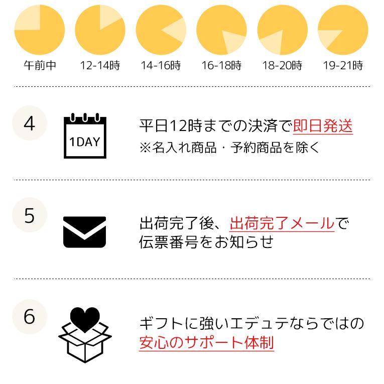 スケボー キッズ スケートボード オーキー プロ スケートボード 子供用 コンプリート ファーストボード 2歳 3歳 4歳 5歳 誕生日プレゼント|edute|19