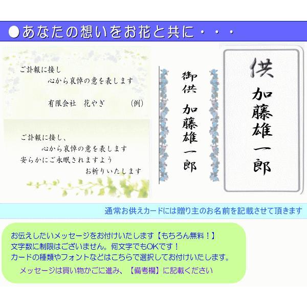 お供え・お悔やみに贈る花 フラワーアレンジ 雅  3,500円 今だけ 送料無料 喪中はがきが届いたら|eehana|03
