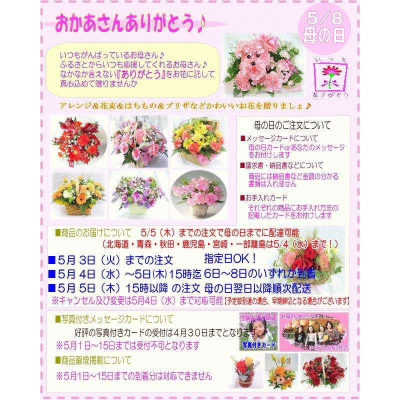 母の日 ランチイエローアレンジ4,950円 送料無料 eehana 05