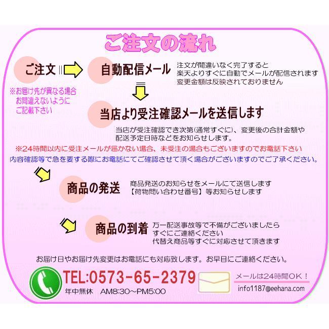 母の日 ランチイエローアレンジ4,950円 送料無料 eehana 09