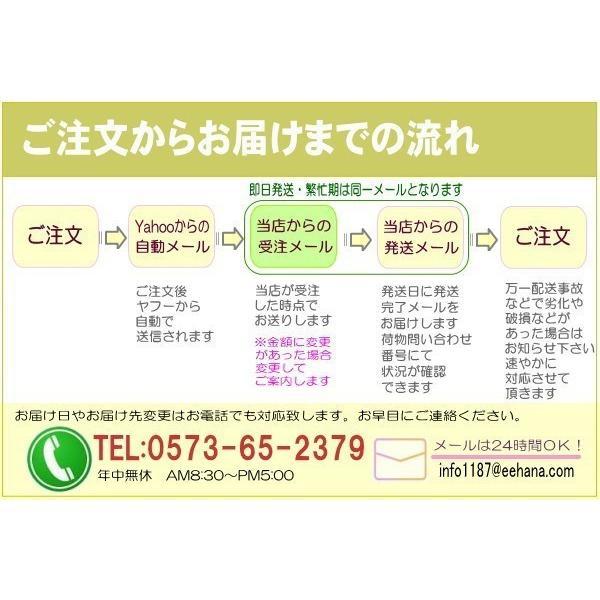母の日 ランチピンクアレンジ4,950円 送料無料 eehana 06