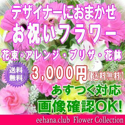 土日祝も営業 お祝い花専用フラワー3,500円 送料無料 出産祝 結婚祝 新築祝 開店祝|eehana|02