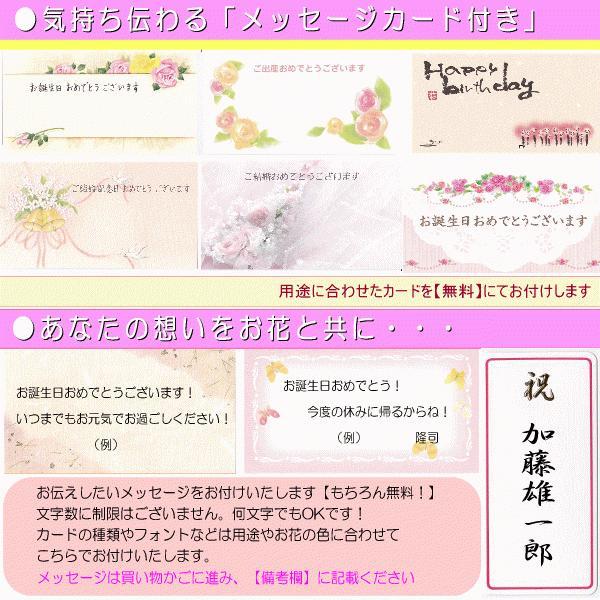 土日祝も営業 お祝い花専用フラワー3,500円 送料無料 出産祝 結婚祝 新築祝 開店祝|eehana|06