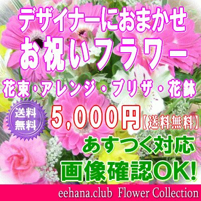 土日祝も営業 お祝い花専用フラワー5,000円 送料無料  あすつく対応 出産祝 結婚祝 新築祝 開店祝|eehana|02
