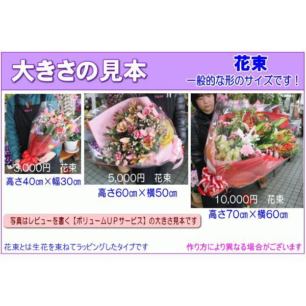 土日祝も営業 お祝い花専用フラワー5,000円 送料無料  あすつく対応 出産祝 結婚祝 新築祝 開店祝|eehana|05