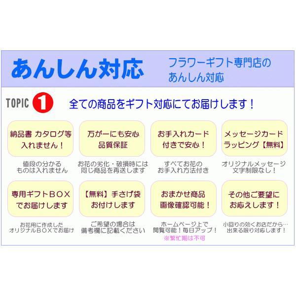 ペットのお供え・お悔やみに贈る花 フラワーアレンジ 青雲  3,500円 今だけ 送料無料 eehana 05