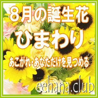 ひまわり花束 花 ギフト バースデー8月の誕生花5,000円 送料無料    あすつく対応 eehana 02