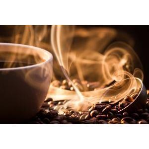 エクーア シベットコーヒー ベンゲット産 豆 100g 送料無料 高級 アラビカ種 ジャコウネコ コピルアク 贈答 ギフト プレゼント 猫 珈琲豆 焙煎|eei7|05