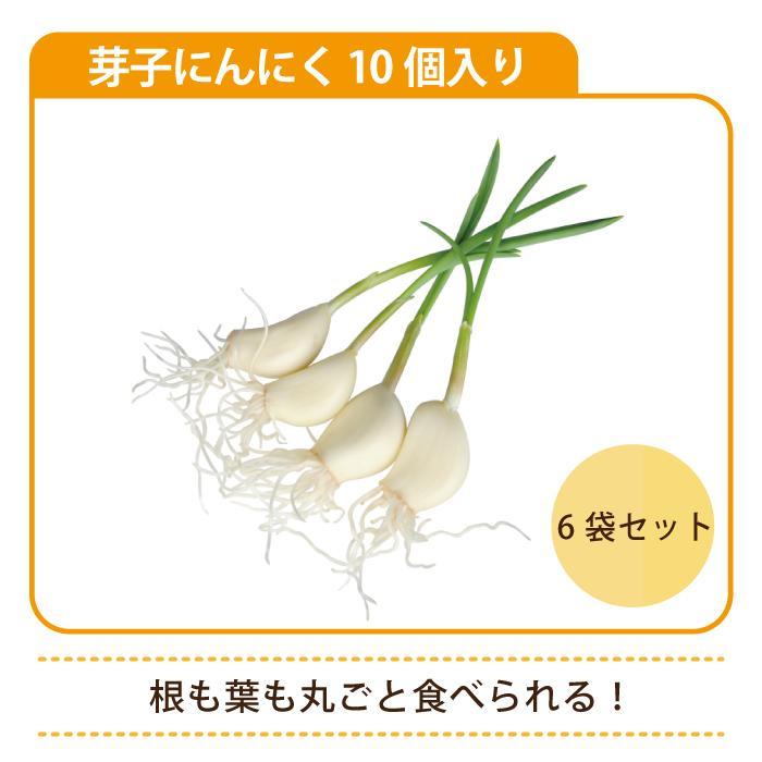 芽子にんにく 10個入り×6袋*|egao-ichiba|04
