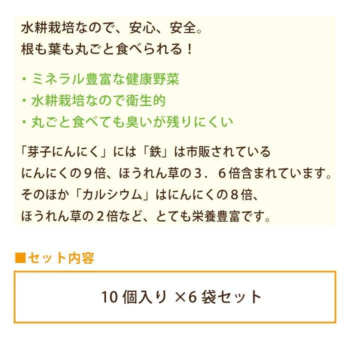 芽子にんにく 10個入り×6袋*|egao-ichiba|05