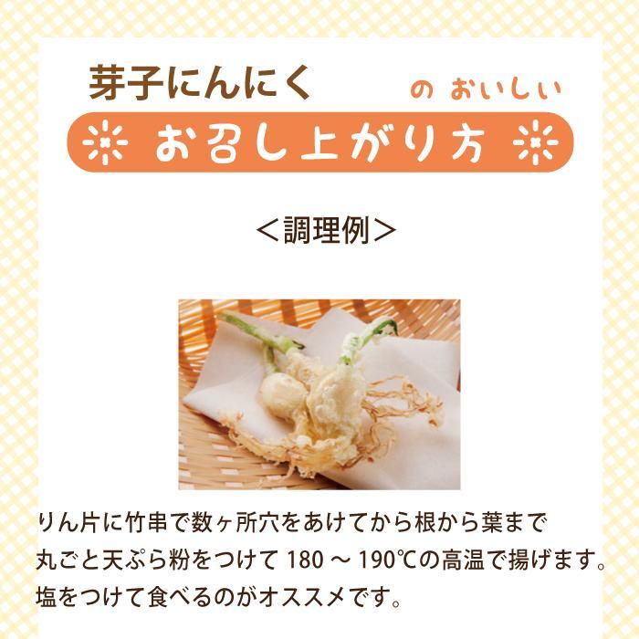 芽子にんにく 10個入り×6袋*|egao-ichiba|06