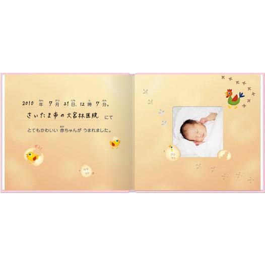 誕生 2、3ヵ月 写真ですぐ作れるしかけ絵本 出産祝い 手形キット アルバムブック たんじょうものがたり/手形キット付き ehon-netcom 05