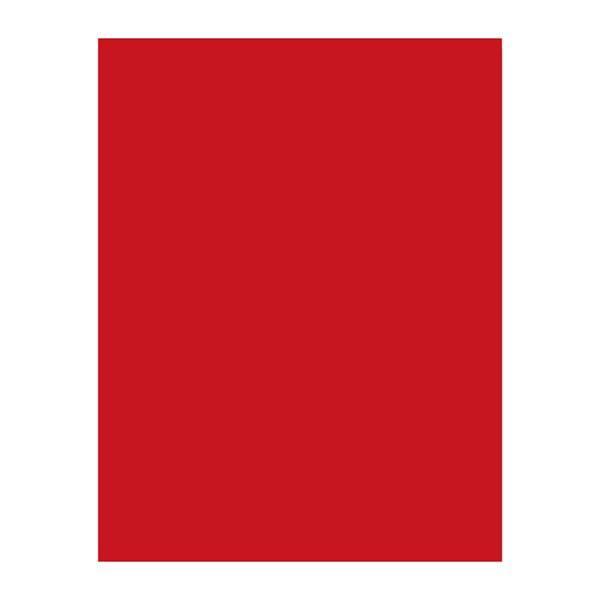 【キャッシュレス5%還元】マットカラーPE アカ 50−65 (200枚)【イージャパンモール】
