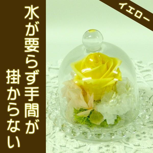 プリザ(ガラスドームイエロー)プレゼント・贈り物に大好評(プリザーブドフラワー)お友達も喜ぶギフト ekoukai