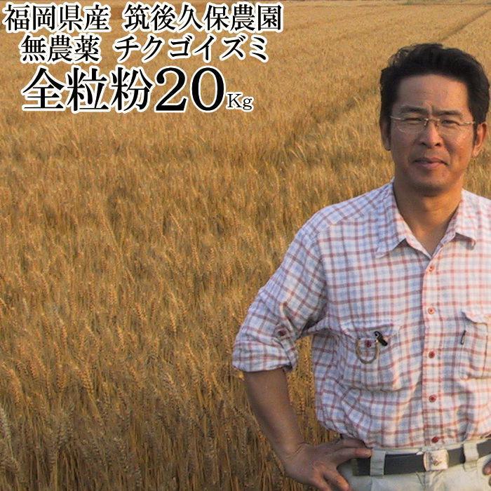 全粒粉 チクゴイズミ 20Kg 無農薬 福岡県産 筑後久保農園 おすすめ特集 中力粉 お買得