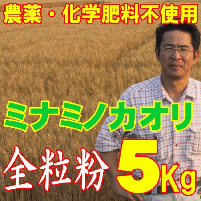 全粒粉 ミナミノカオリ 5Kg 無農薬 中 メーカー在庫限り品 福岡県産 強力粉 筑後久保農園 数量限定アウトレット最安価格