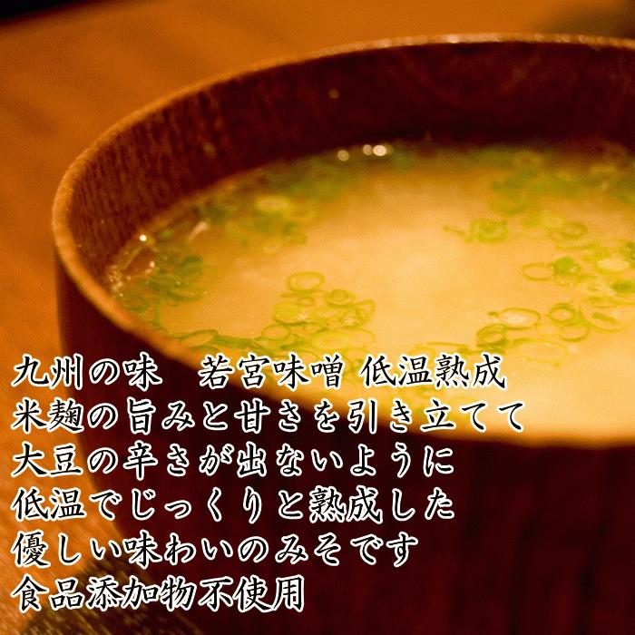 若宮みそ 1Kg 2袋 日本郵便小口セット | 選べる 米味噌 合わせ味噌 九州 甘い味噌 麹みそ|ekubo|02