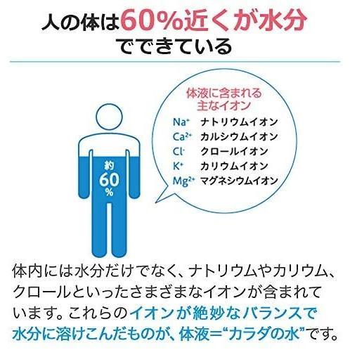 大塚製薬 ポカリスエット パウダー (74g)1L用×5袋|eleven-back|02