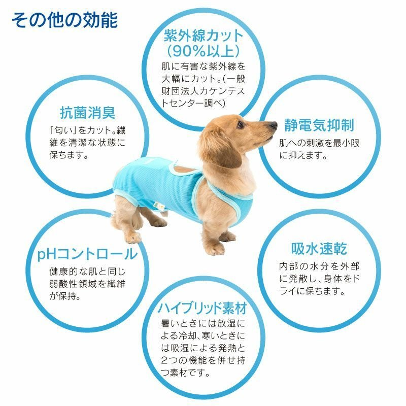 【送料込】エリザベスカラーの代わりになる 獣医師推奨 犬用術後服エリザベスウエアR 男の子 雄 ダックス 小型犬用 【ネコポス値2】 ウェア|elizabethwear|09