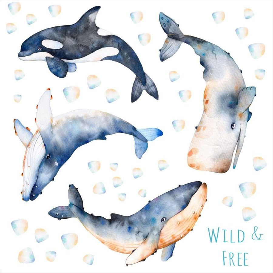 海の生物 シール式ウォールステッカー 魚 Fish Sea クジラ くじら