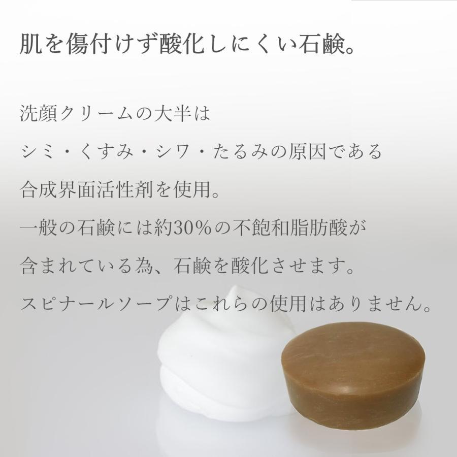 Spinahl スピナール 美容石鹸 90g  日焼け対策 シミ 美白 化粧品 人気 綺麗な肌 健やか うるおい肌 エイジングケア emilysshop 04
