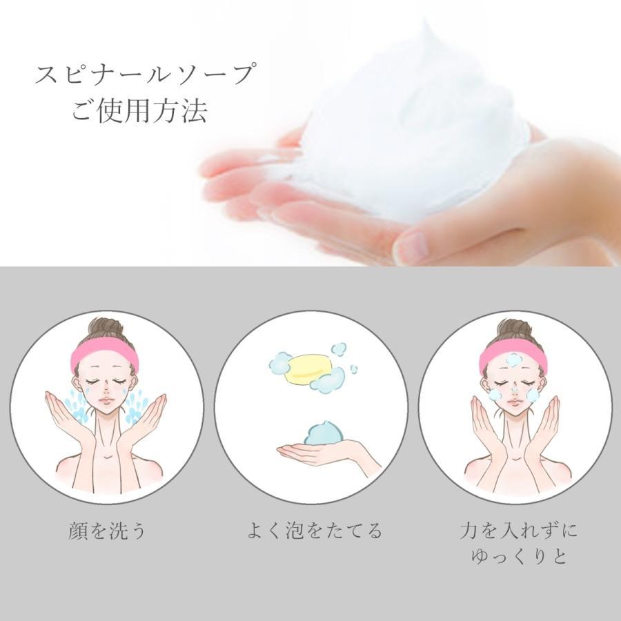 Spinahl スピナール 美容石鹸 90g  日焼け対策 シミ 美白 化粧品 人気 綺麗な肌 健やか うるおい肌 エイジングケア emilysshop 05