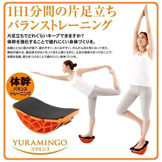 立ち できない 片足 片足立ちできないと大変?!出来ない原因は?トレーニングでロコモ予防。