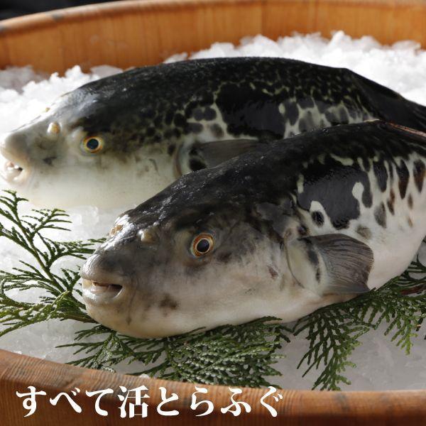 下関(5〜6人前) en-morishige 02