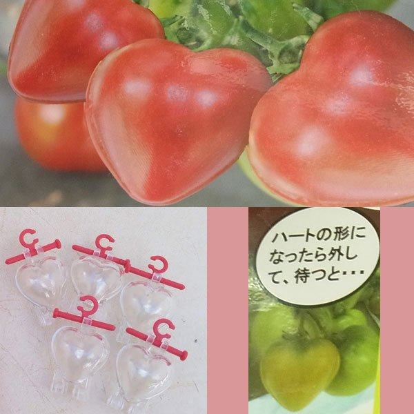 ハートのトマトミニ5個入り 正規品スーパーSALE×店内全品キャンペーン ミニトマト用型どりケース 迅速な対応で商品をお届け致します