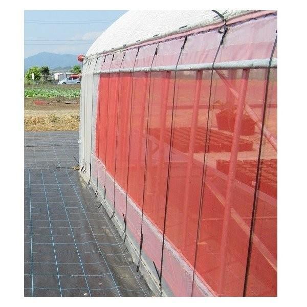 サンサンネット クロスレッド 0.8mm目×幅150cm×長さ100m