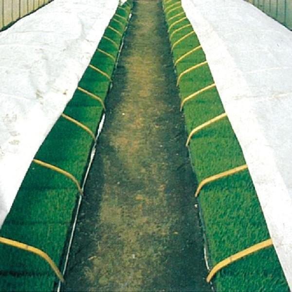 不織布 保温資材 ラブシート20307白 厚さ0.13mm×長さ100m×幅180cm