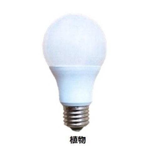 電照用LED電球 植物用 FLA08N-50 市場 [再販ご予約限定送料無料]