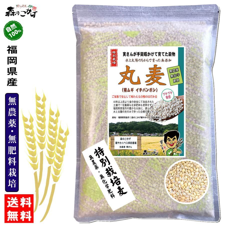 森のこかげ 丸麦 750g  無農薬 特別栽培|epicot