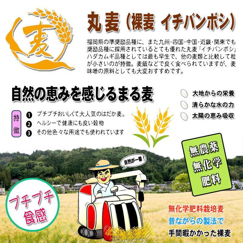 森のこかげ 丸麦 750g  無農薬 特別栽培|epicot|02