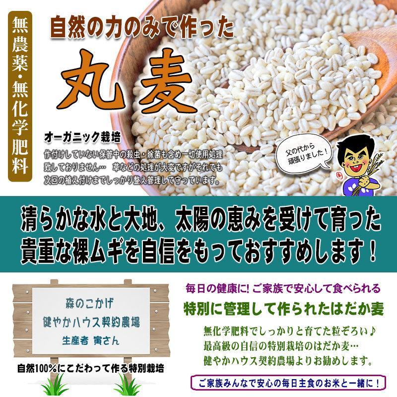 森のこかげ 丸麦 750g  無農薬 特別栽培|epicot|03