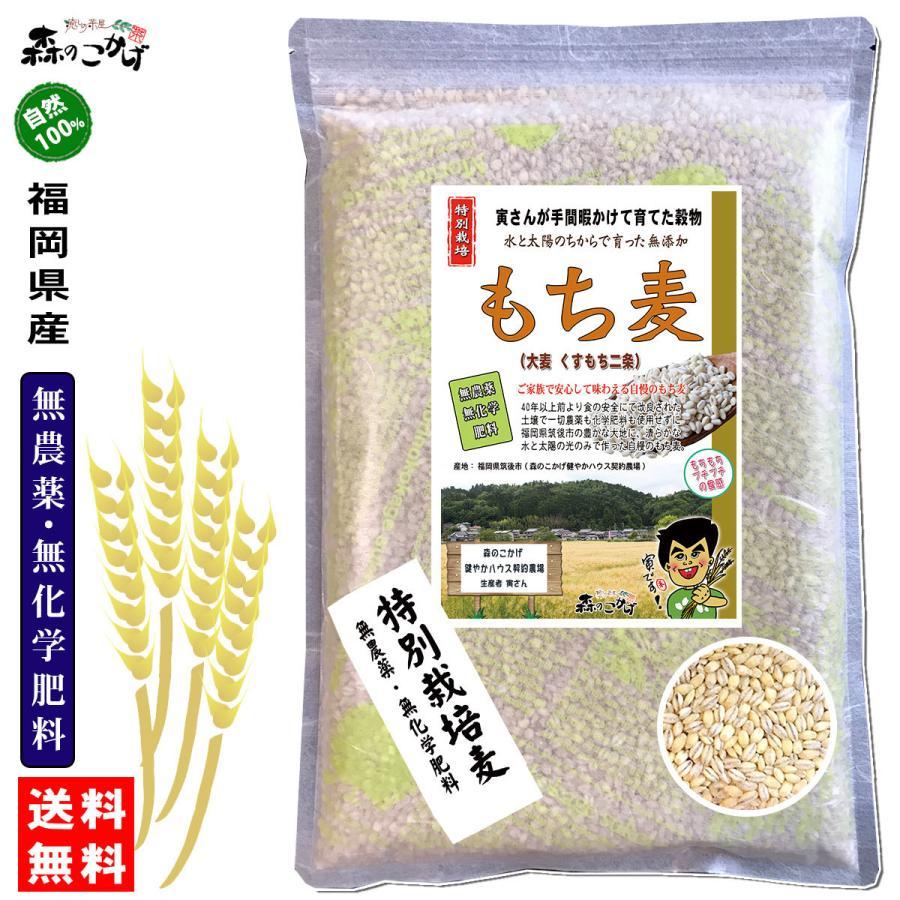 森のこかげ もち麦 500g  無農薬 特別栽培|epicot