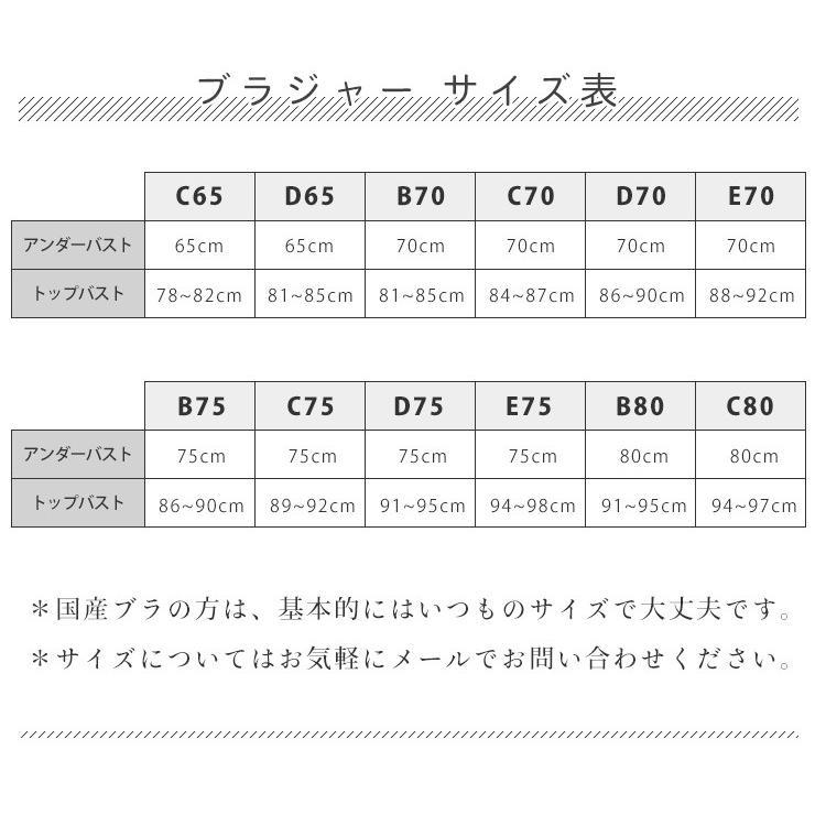 初めてさん限定 返品送料無料 豪華版 シルク ブラジャー お試し福袋 日本製 レディース|eses|06