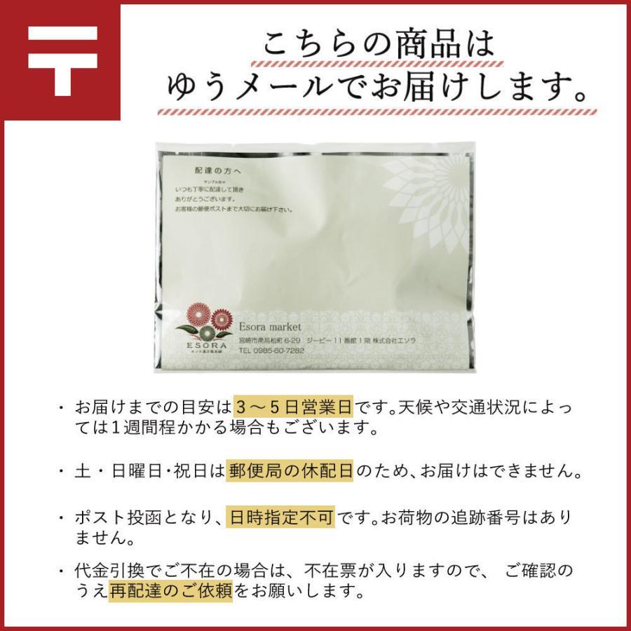 ダイエット お茶 七美茶 40包 トライアル 初回限定 タイムセール|esora|18