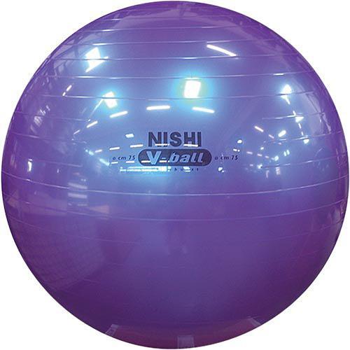 ニシスポーツ(NISHI) ノンバーストVボール 75 メタリックパープル NT5874C トレーニング 体幹 ストレングス インナーマッスル