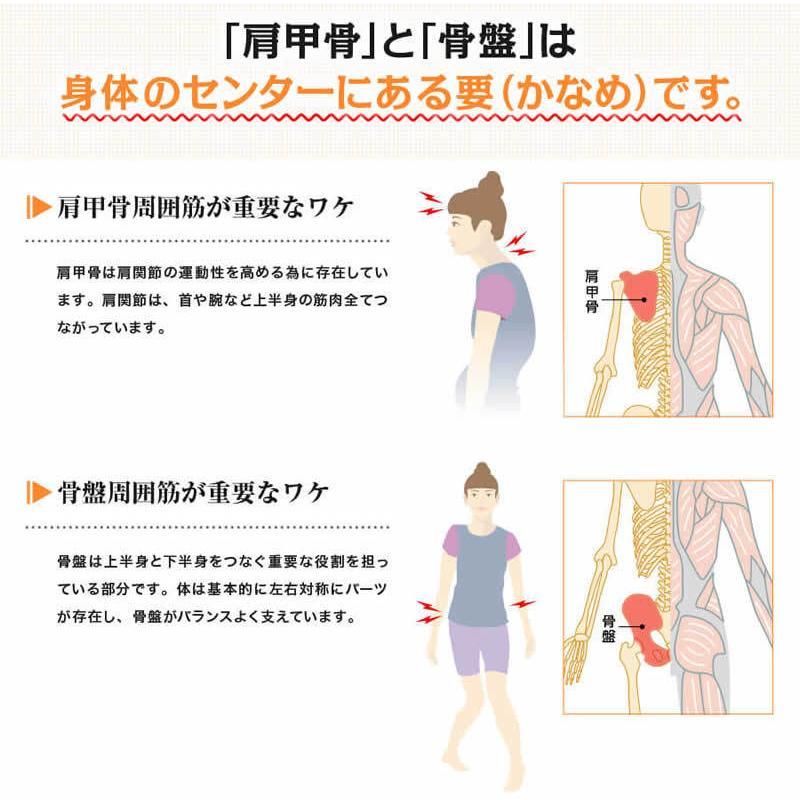 はがし 効果 甲骨 肩 肩甲骨はがしで肩こり解消!恐ろしすぎる効果は・・・