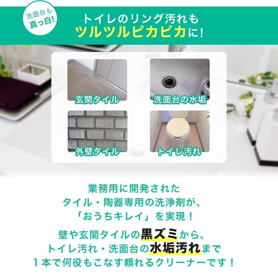 タイルクリーナー 4kg(ポリ容器入り)TS-101 ビアンコジャパン特約販売店 esteem-direct 02