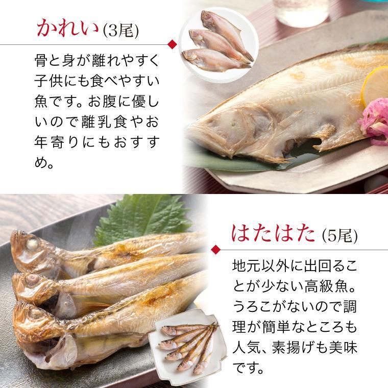 プレゼント ギフト 干物セット のどぐろ 2枚入 6種18枚 辛子明太子 高級  魚 詰め合わせ 送料無料  ((冷凍))|etizentakaraya|12