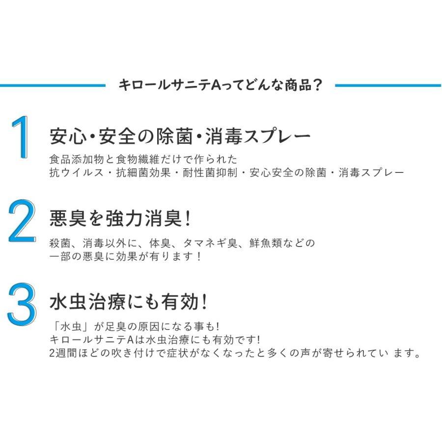 除菌 スプレー 抗菌 静岡大学発ベンチャー キロール・サニテA 5L eu-bs 04