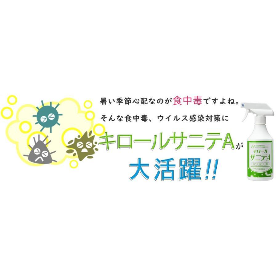 除菌 スプレー 静岡大学発ベンチャー開発 キロールサニテA500ml 白金ナノ配合 アルコールタイプ|eu-bs|03