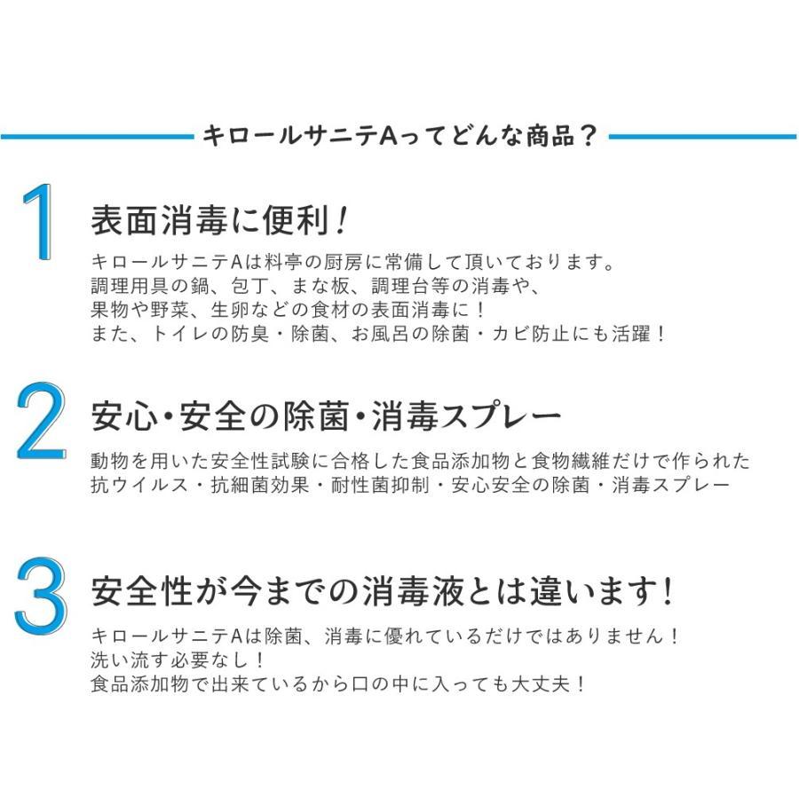 除菌 スプレー 静岡大学発ベンチャー開発 キロールサニテA500ml 白金ナノ配合 アルコールタイプ|eu-bs|04