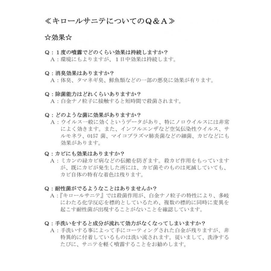 除菌 スプレー 防カビ 抗菌 静岡大学発ベンチャー開発 キロール・カビプロ 500ml|eu-bs|05