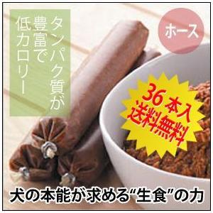 ドッグフード グゥードバランス栄養食・ホース(馬)36本