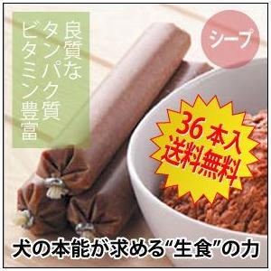 ドッグフード グゥードバランス栄養食・シープ(羊)36本