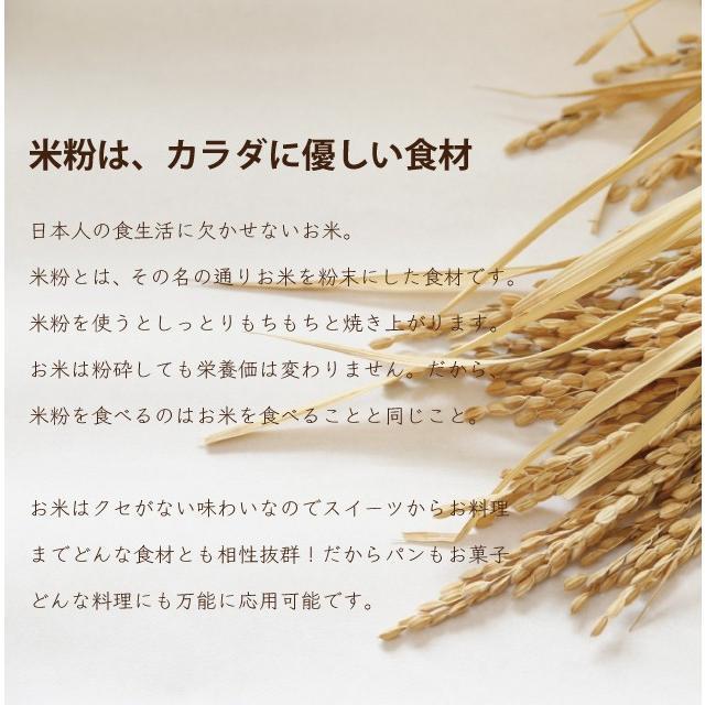 グルテンフリー パンケーキミックス 国産 米粉 と ココナッツ 200グラム 1袋|every-store|05