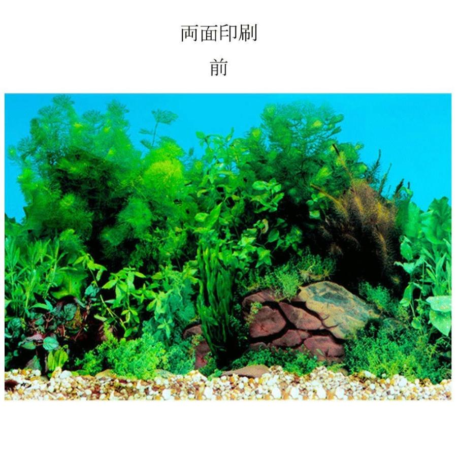 30x52cm 水族館ポスター バックスクリーン 3d効果 両面壁紙 水槽の背景 水槽の飾り 水草とサンゴ礁のポスター Evidenthree 通販 Yahoo ショッピング
